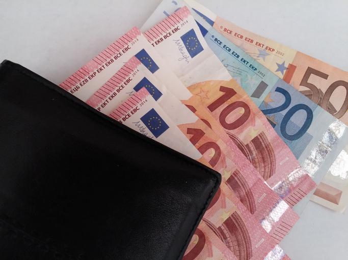 eura a peněženka